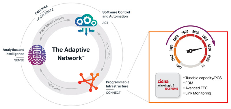 The Adaptive Network diagram