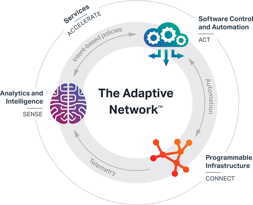 Adaptive Network diagram 2019