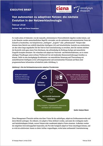 Analysys Mason Executive Brief: Von autonomen zu adaptiven Netzen