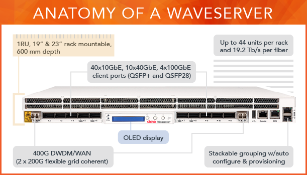 Anatomy of a Waveserver illustration