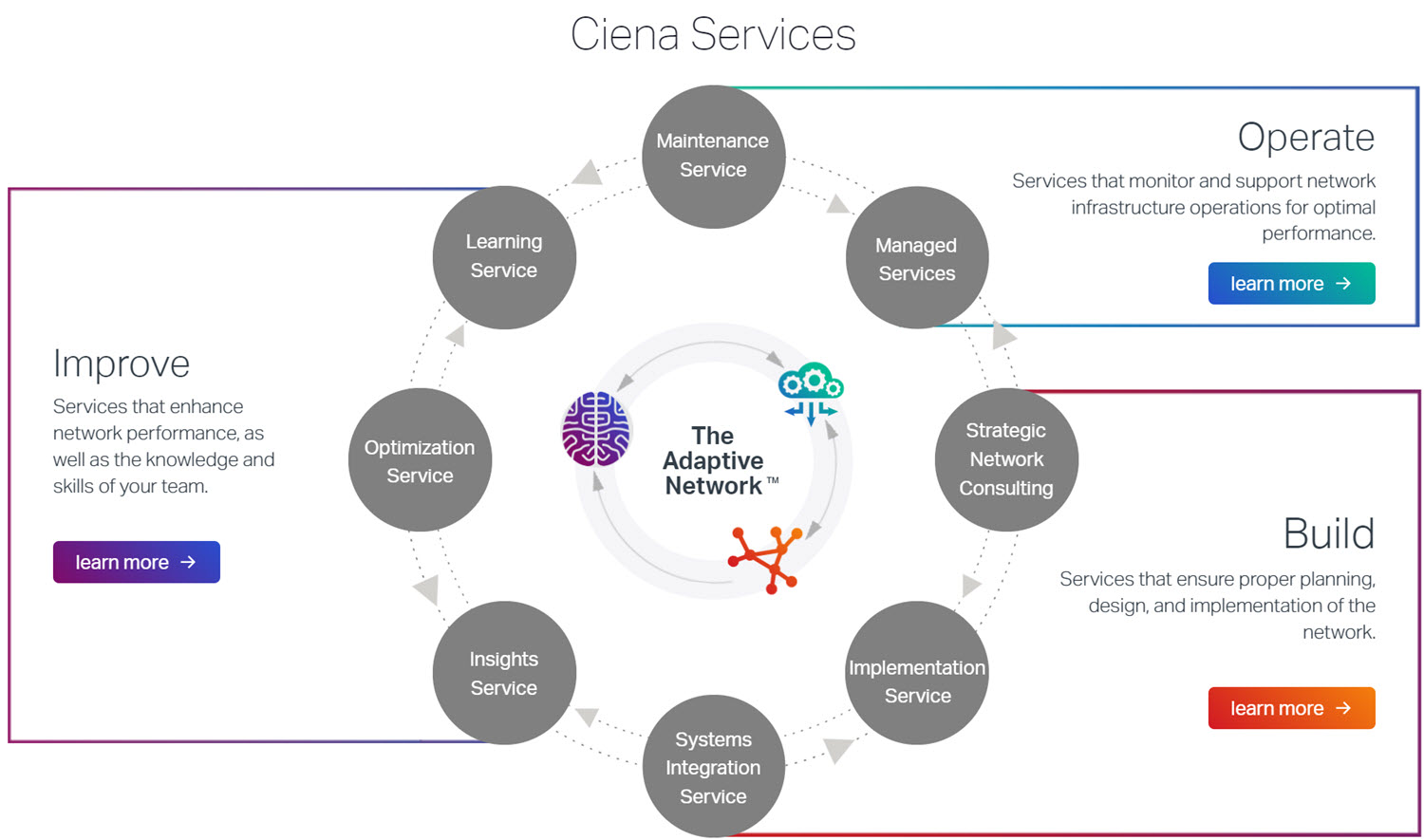 Ciena Services diagram