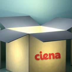 Lighted Ciena box