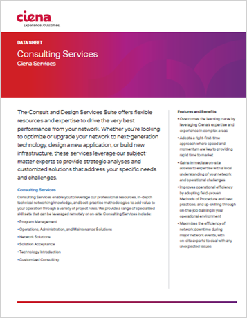 Consulting Services data sheet