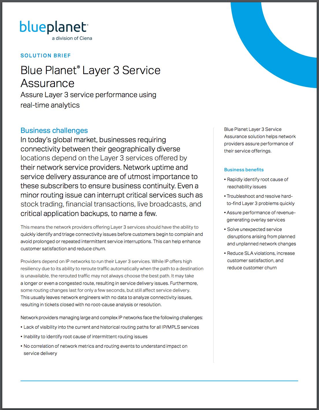 Blue Planet Layer 3 Service Assurance