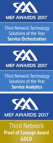 Ciena 2017 MEF Awards