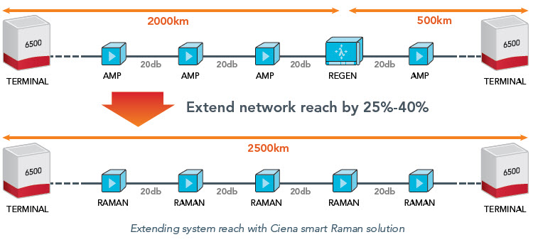 Raman System Reach graphic