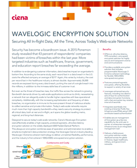 WaveLogic Encryption Solution document preview