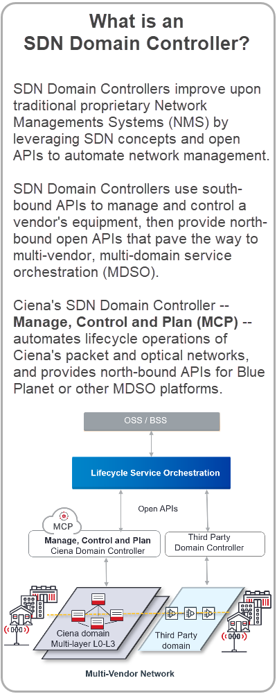 SDN Domain Controller Definition