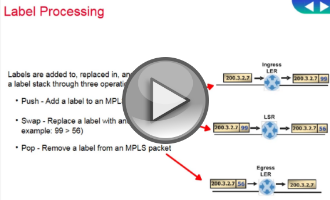 Label processing video thumb