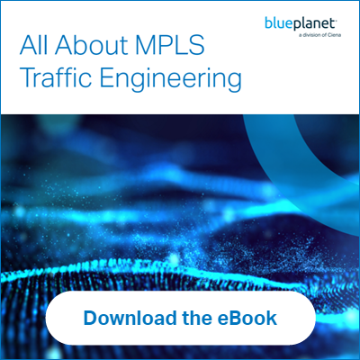 MPLS+Traffic+Engineering+eBook