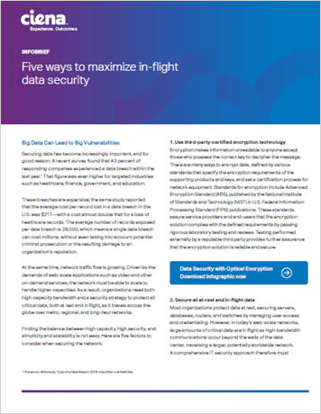 5 Ways to Maximize In-flight Data Security