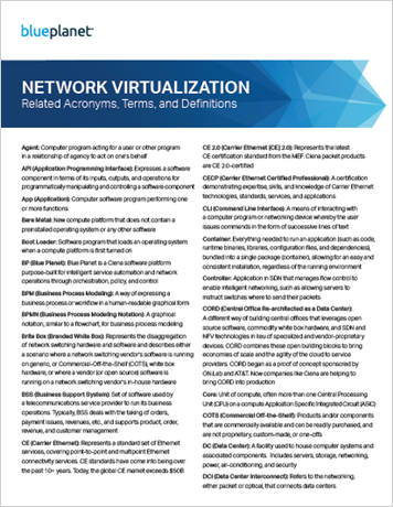 Network Virtualization Glossary