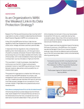 Is an Organization's WAN the Weakest Link in its Data Protection Strategy? white paper
