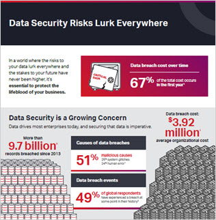 24-7 Data Security with Optical Encryption Infographic