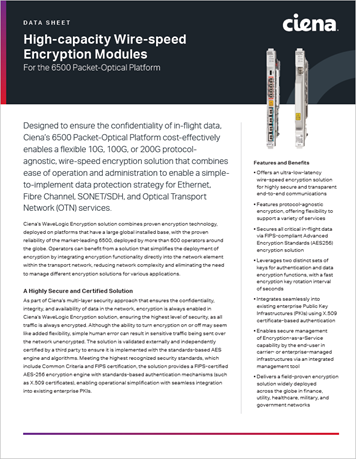 High-capacity Wire-speed Encryption Modules
