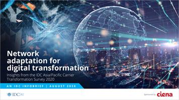 IDC Ciena 2020 IB preview