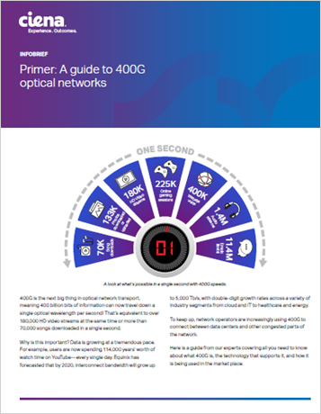 Primer: A Guide to 400G Optical Networks Infobrief