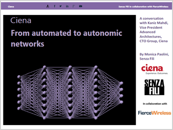 Senza Fili: From Automated to Autonomic Networks Info brief