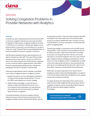 Solving Congestion Problems in Provider Networks with an Adaptive Network Strategy white paper