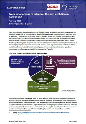 Analysys Mason Executive Brief: From Autonomous to Adaptive