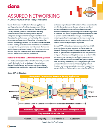 Assured Networking: A Critical Foundation for Today's Networks