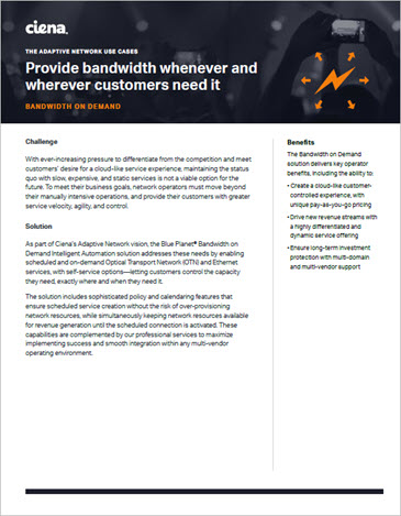 Provide Bandwidth Whenever and Wherever Customers Need it