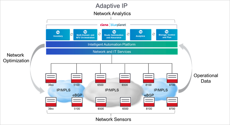 Схема Ciena Adaptive IP