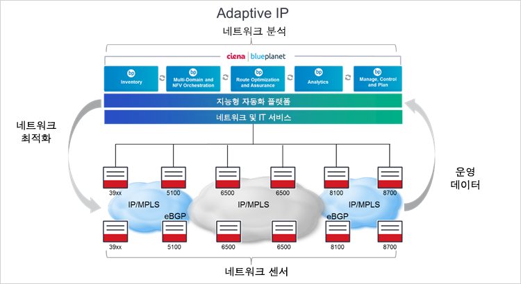 Ciena의 Adaptive IP 다이어그램