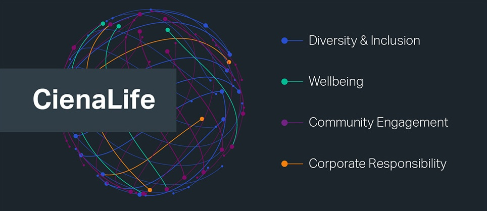 Globe made of different colored lines and points. Text of Diversity & Inclusion, Community Engagement, Wellbeing, and Corporate Responsibility