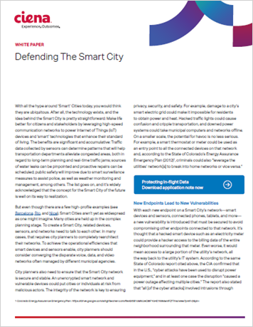 Defending the Smart City