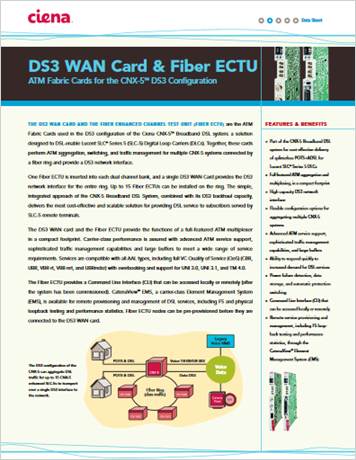 DS3 WAN Card and Fiber ECTU - product datasheet