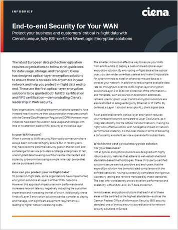End-to-end Security for Your WAN infobrief thumbnail
