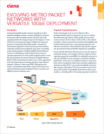 Evolving Metro Packet Networks with Versatile 10GbE Deployment