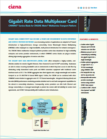 Gigabit Rate Data Multiplexer Card product data sheet