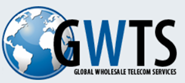 Telecom Wholesale Services LLC