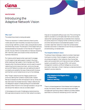 Introducing the Adaptive Network Vision
