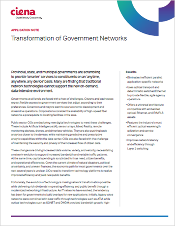 Transformation of Government and Public Networks