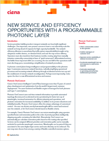 New Service and Efficiency Opportunities with a Programmable Photonic Layer