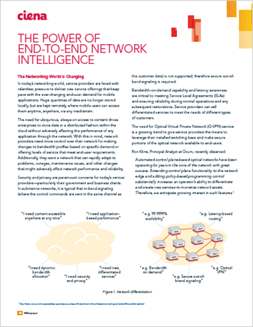 The Power of End-to-End Network Intelligence
