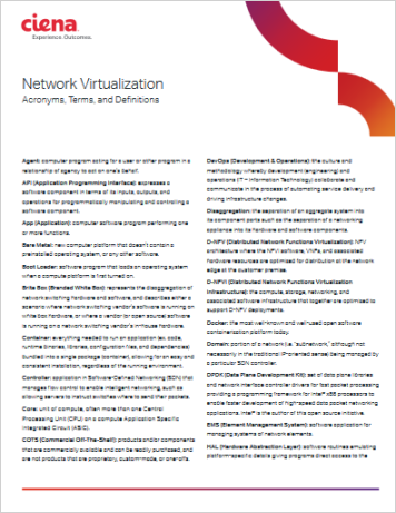 SDN NFV Industry terms