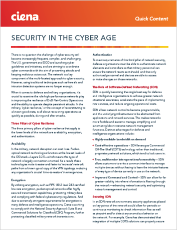 Security in the Cyber Age
