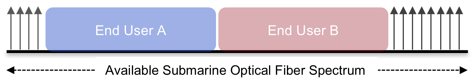 Virtualizing Submarine Cable Fibers via Spectrum Sharing