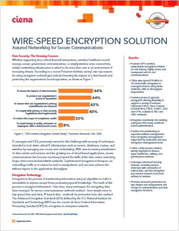 Wire-Speed Encryption Solution