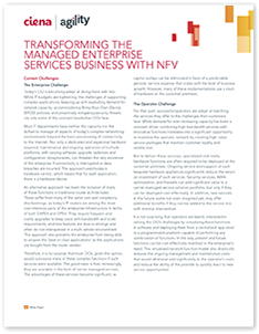 Transforming the Managed Enterprise Services Business with NFV white paper thumb
