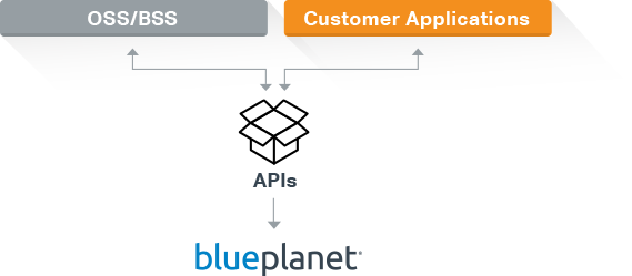 Blue Planet Open API