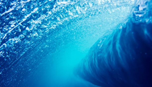 Ciena - Resources - Blog Posts - Submarine Network Operators