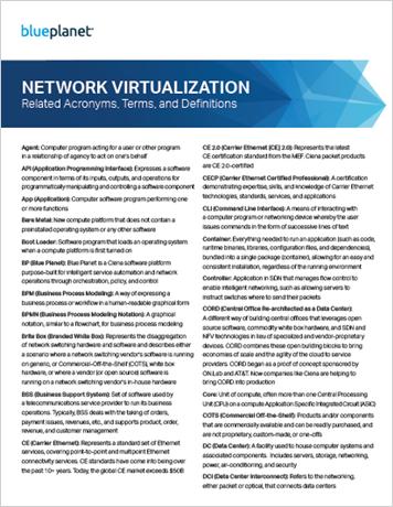 Network Virtualization Glossary