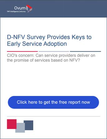 DNFV survey report